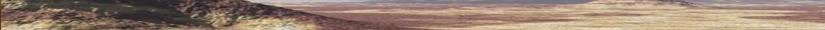 Boundless Sands