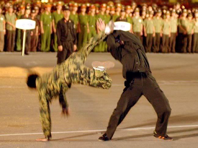 Armée Populaire Vietnamienne/Vietnam People's Army (VPA) Loadimage2