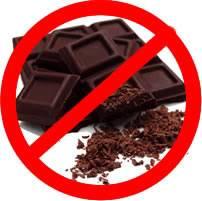 Šta pas ne bi smeo da jede Choco