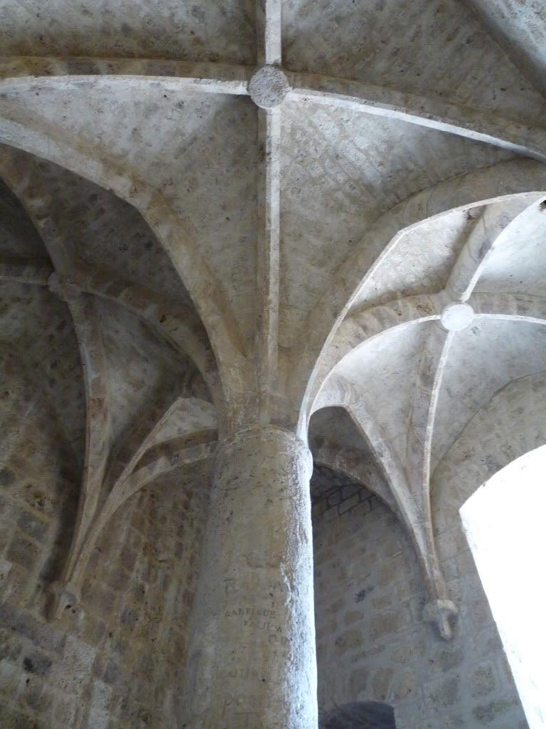 Ruta por el sureste de Francia. Castillos P1000201