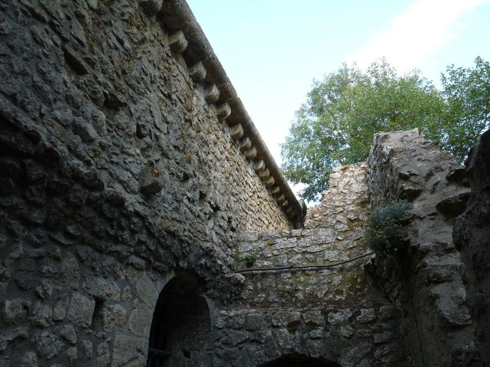 Ruta por el sureste de Francia. Castillos P1000236