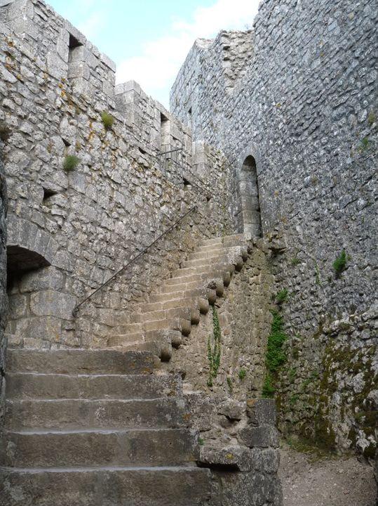 Ruta por el sureste de Francia. Castillos P1000250