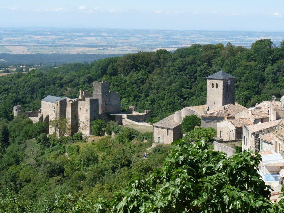Ruta por el sureste de Francia. Castillos P1000472