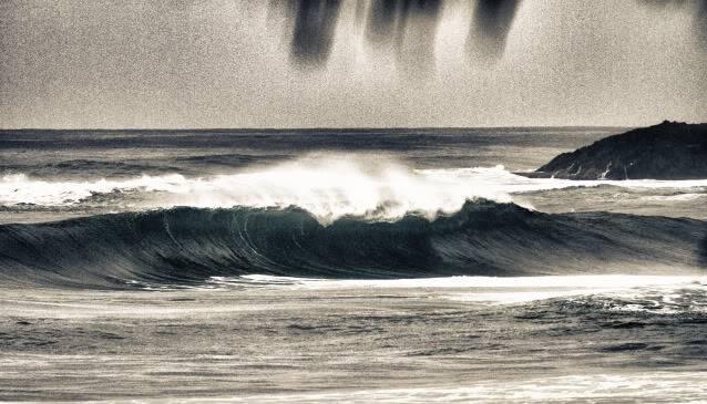 27-Dic-2010 Costa Norte IMG_1838