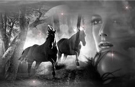 Fantasy art - Page 3 HORSES-2-1