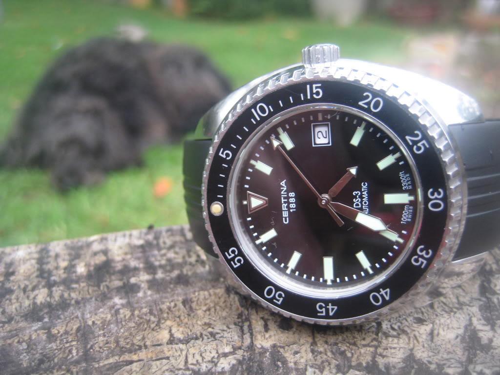 Certina Dive Watches SwimWear019