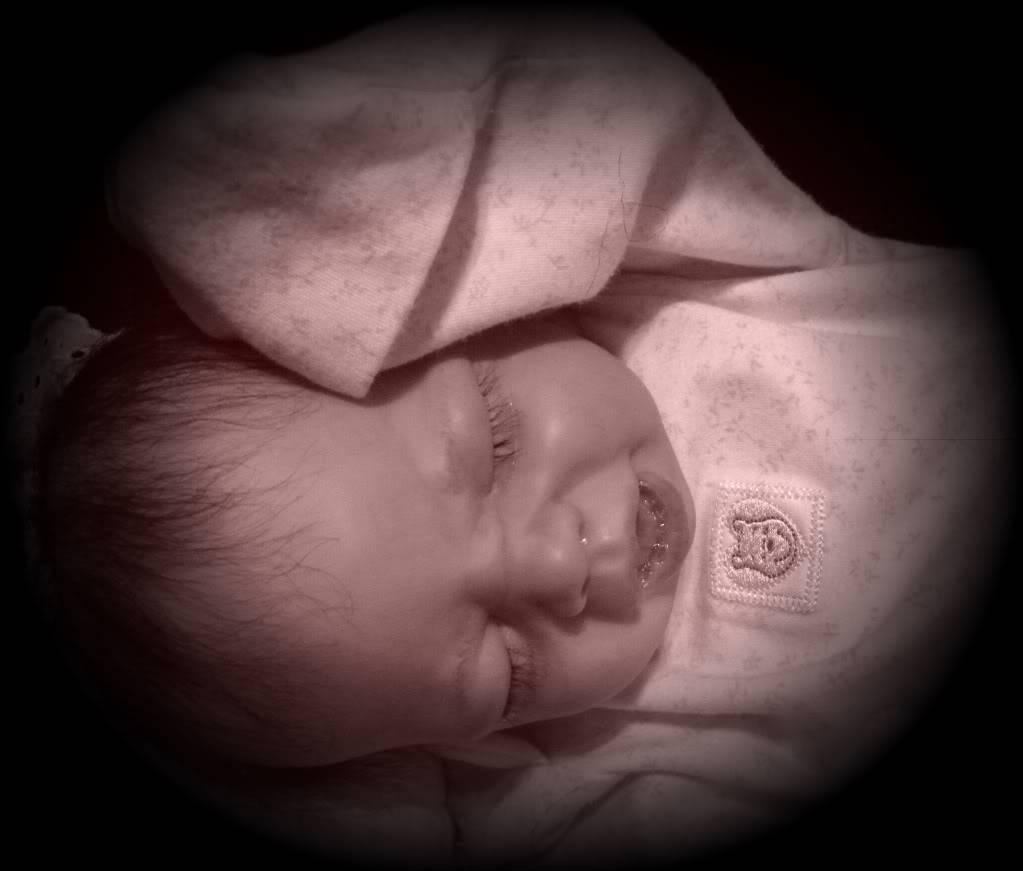 Baby Sofia Has Been SOLD! DSCN2559-1