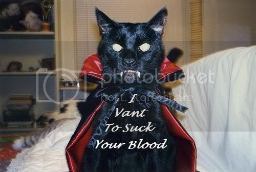 Vampire Kitty Pictures, Images and Photos