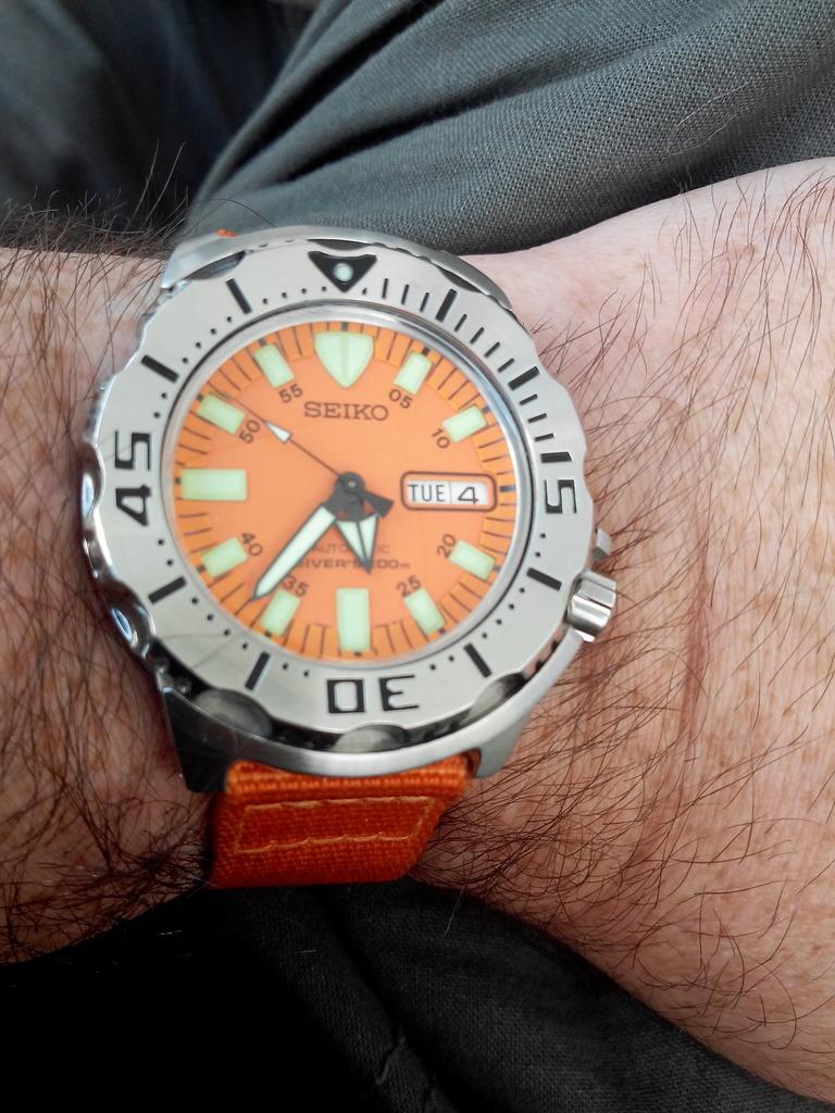 Votre montre du jour - Page 3 IMG_20150804_173729_zpsdrpor0af