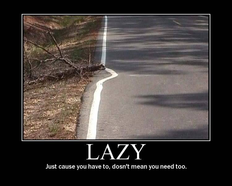 Funny Pictures... Lazy