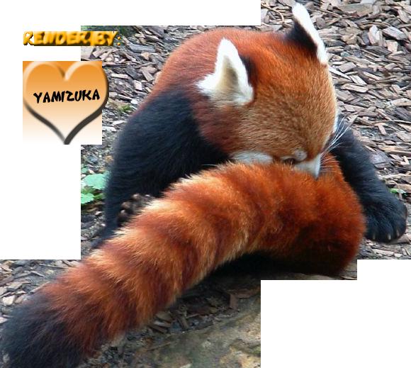 Taller de YamizukaDa~ Firefox