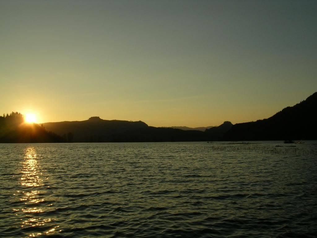Elbe, Morton, Riffe Lake & Packwood, WA 07-10-08006