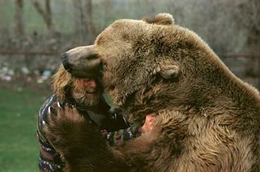des Siths dans la bible ?! Bear_attack