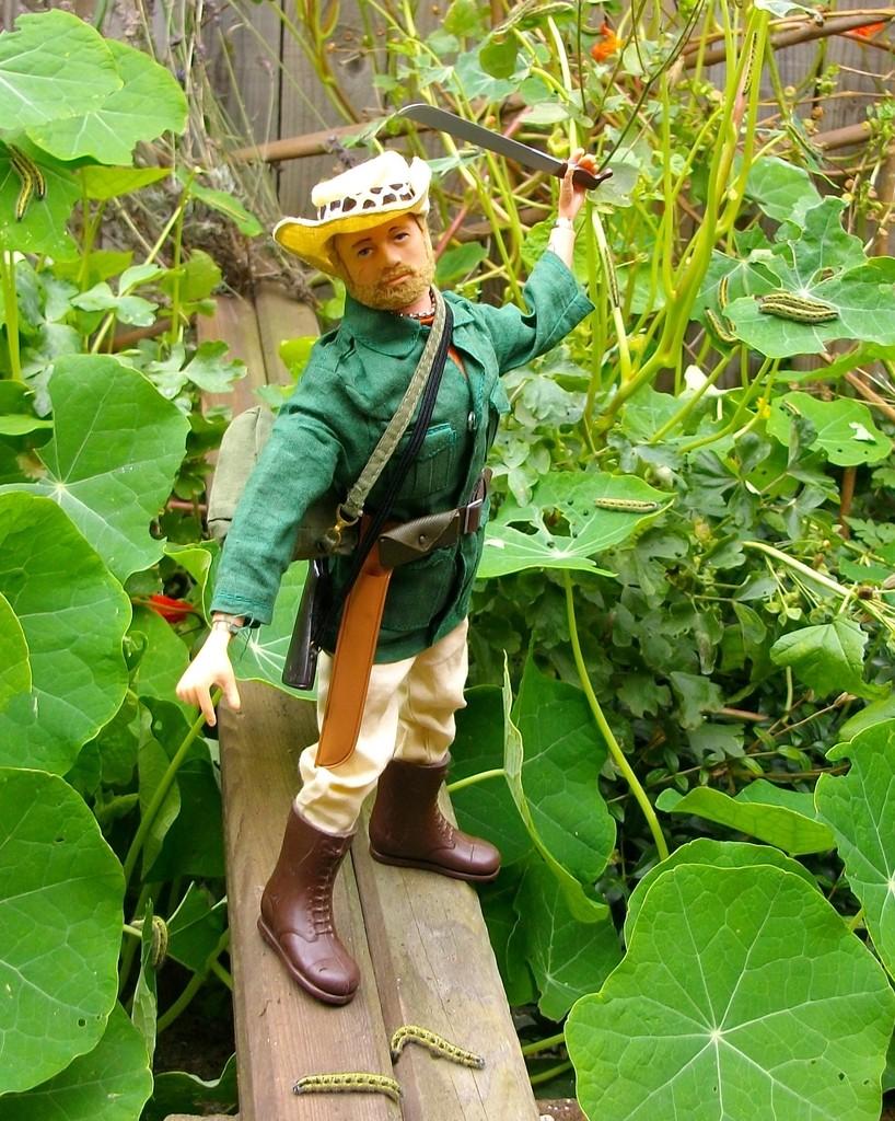 Jungle Explorer Experdition -Danger on every leaf.... IMGP9082_zpsvdsug46w