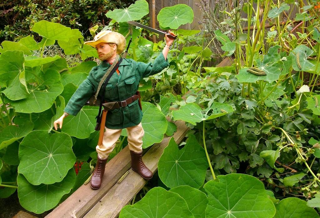Jungle Explorer Experdition -Danger on every leaf.... IMGP9089_zpssvwrfbfn