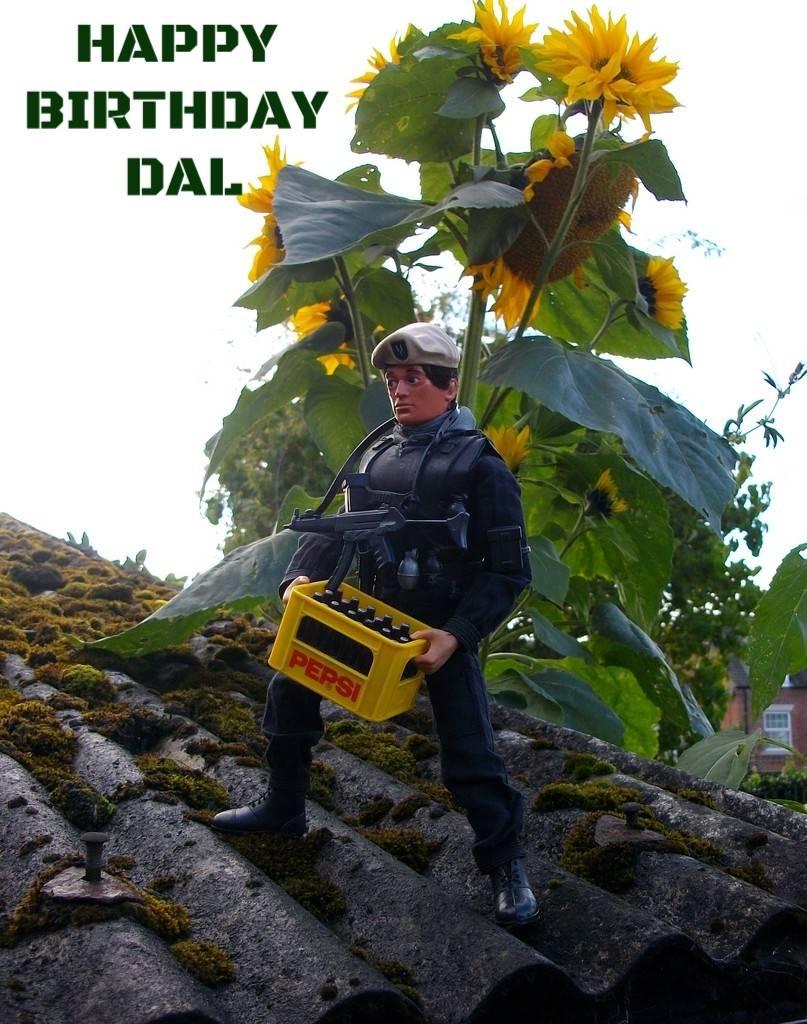 Happy Birthday Dal. E9c2619c-d6d1-466d-b91e-7f970b584a8c_zpss3rvtiue