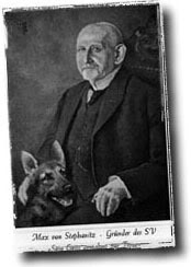 اصل كلاب الجيرمن شيبرد وجذورها Stehanitz20and20gsd