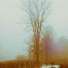 Poèmes Nocturnes de Salem I3-1