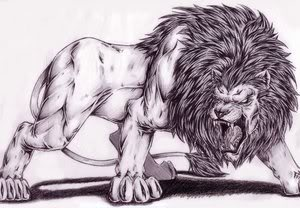 WOLVES CREED/LION'S CREED Lion_1_by_Dokuro