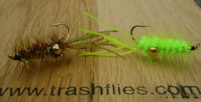 Crawfish Patterns  IMGP3659