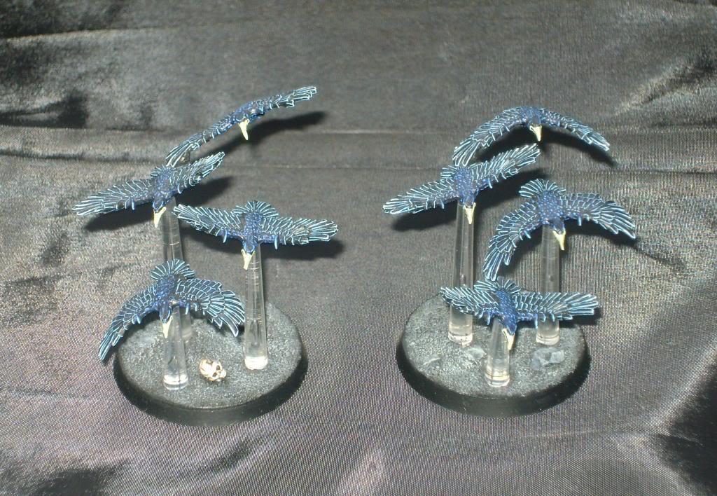 Dark Moon Kabal Flocks2