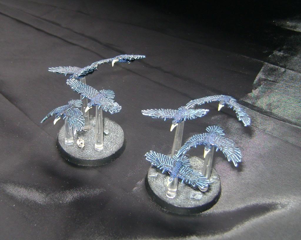 Dark Moon Kabal Flocks3