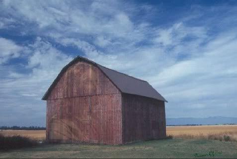 The Barn Barn