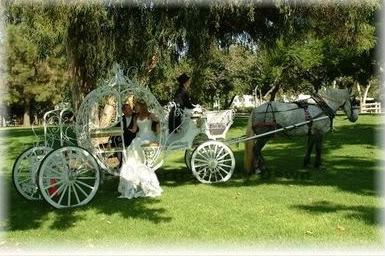 Wedding of Islandbabe & Malion Scott - Page 2 Carriages-1