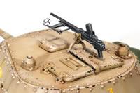 New from Model Victoria DSC_0031_tagliata