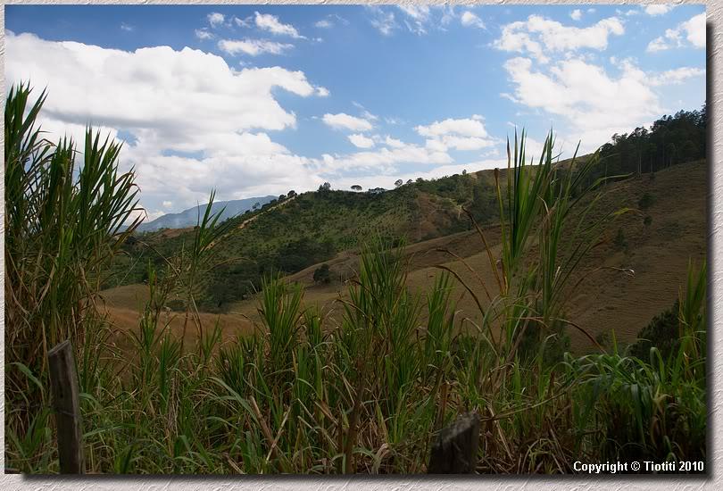 Constanza 2010 DSC_0322