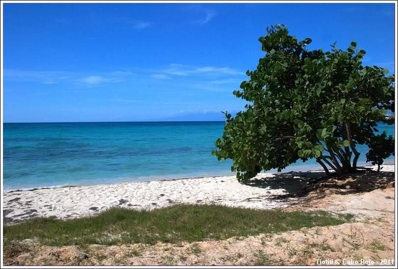 République Dominicaine. Le sud CaboRojo_0096