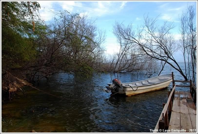 République Dominicaine. Le sud LagoEnriquillo_0416