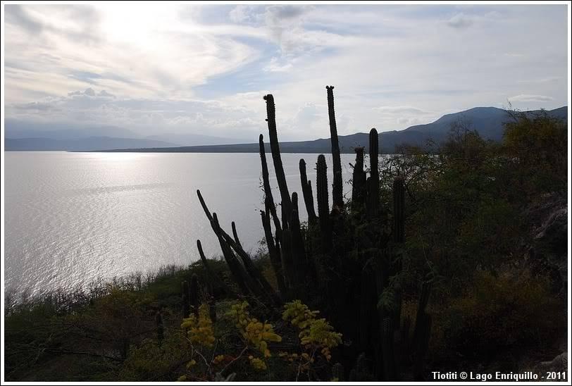 République Dominicaine. Le sud LagoEnriquillo_0455