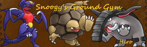 Snoogy's Ground Gym On WiFi! GroundGym