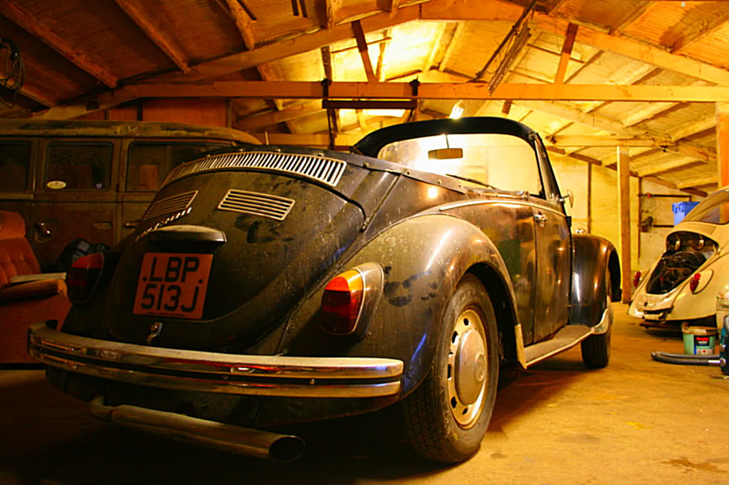 My first Beetle - Page 2 IMG_8902