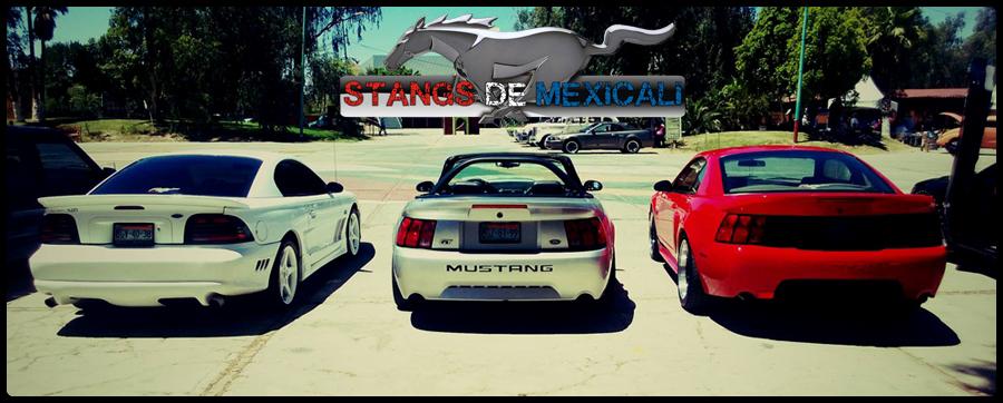 Stangs de Mexicali