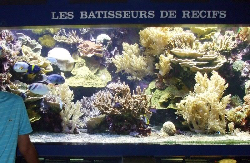 Musée océanographique de monaco 2001560362346457283_rs