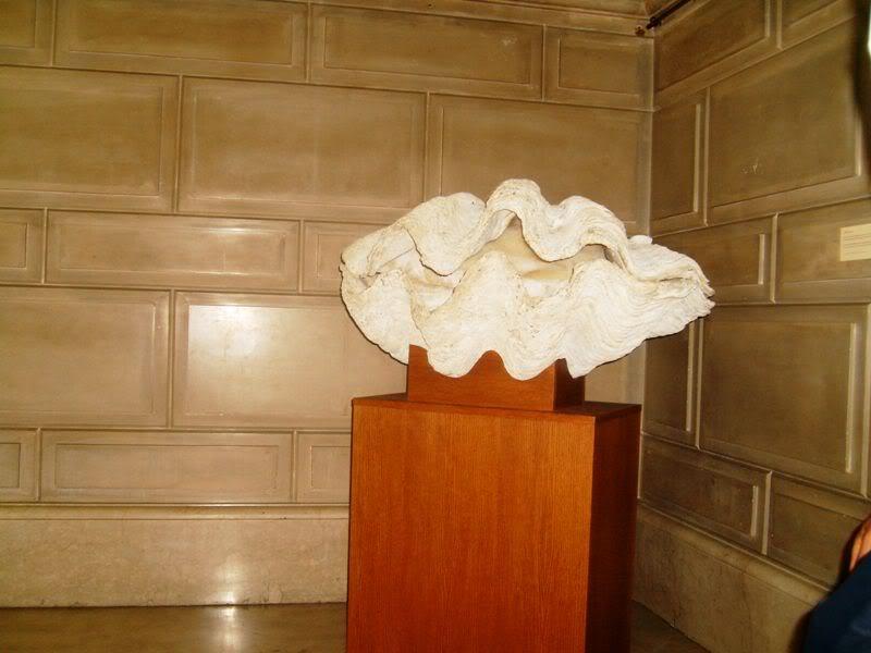 Musée océanographique de monaco 2004491303497092740_rs