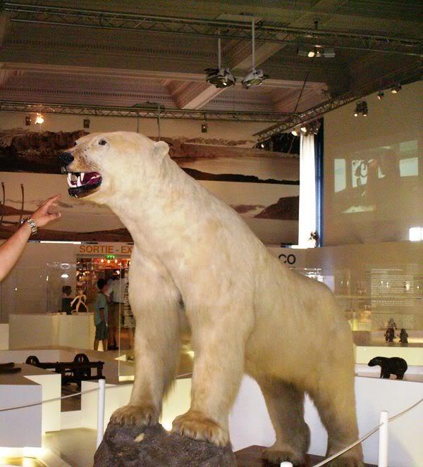 Musée océanographique de monaco 2004493778579445496_rs