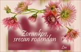 srecan rodjendanko zorankov!!! Th_zorankov
