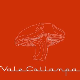 Discografia de Café Tacvba (SUPER GRUPO) Cafe_Tacuba-Vale_Callampa-Frontal