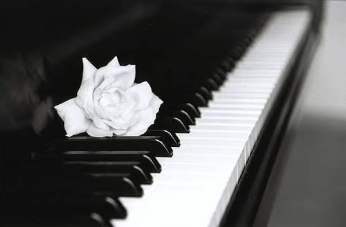 موسيقى مميزة مع آلة مقتدرة إسمها البيانو : شلال من الإبداع ! Piano