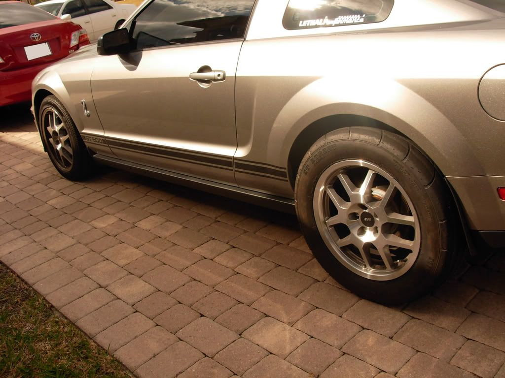 Mounted the Mickeys on the GT500 DSCN0719