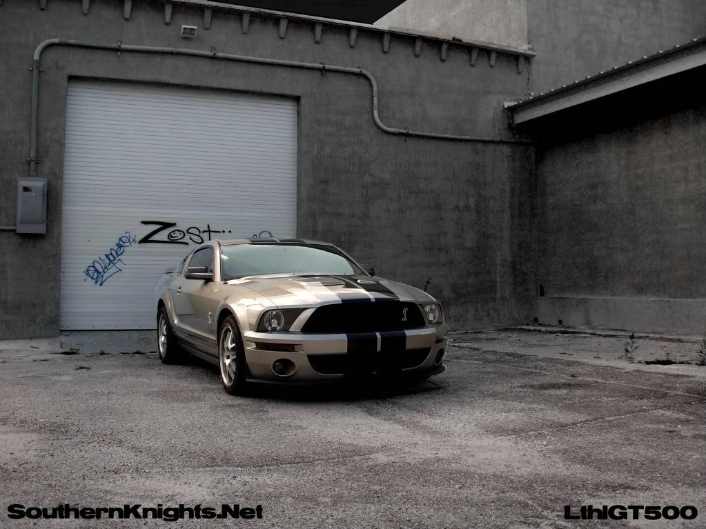 SouthernKnights GT500 picture SKGT500-1
