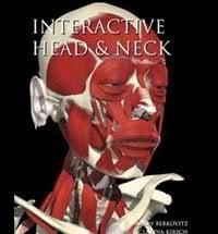 Anatomia - Apontamentos e material HeadandNeck