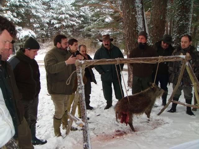 III Curso Básico de Rastreo con Perros de Sangre Balisticapeq