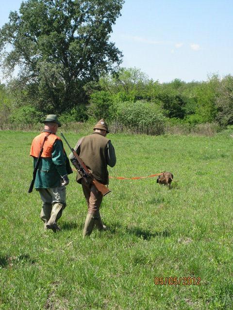 Rastreando en Hungría H3