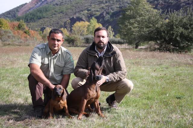 Otro cachorro para las Reservas de Caza IMG_3671