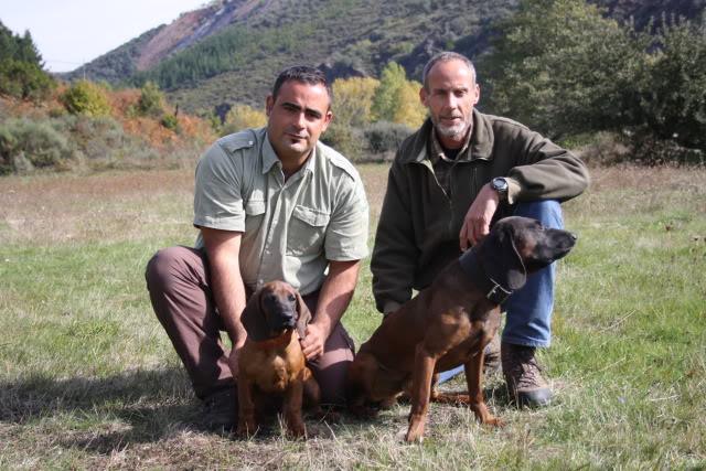 Otro cachorro para las Reservas de Caza IMG_3675