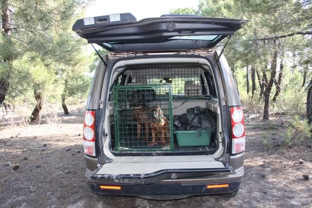 ¿Donde transportais a los perros? Tosca14-07-1110web